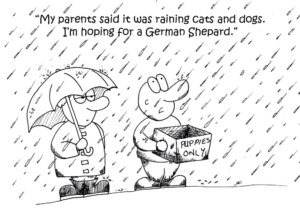 """Two kids stand out in the pouring rain. One holds an umbrella, while the other, uncovered, holds out an open box marked """"Puppies Only."""" The uncovered kid says, """"My parents said it was raining cats and dogs. I'm hoping for a German Shepard."""""""